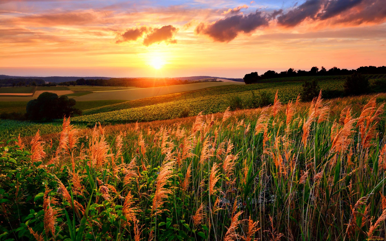 Картинки закат и рассвет в поле